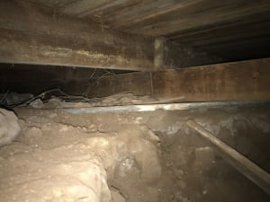 Crawl Space Issues 1